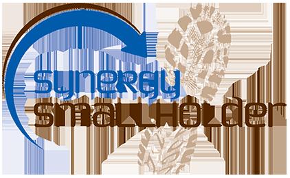 Synergy Smallholder Logo