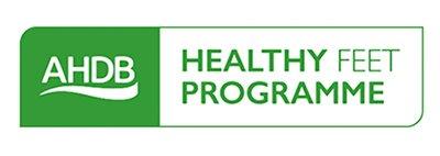 AHDB Healthy Feet Programme